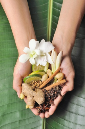 Handfull of herbs, spices and flower used in spa treatment