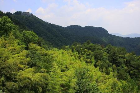 Deqing County, Zhejiang Moganshan Scenic Area