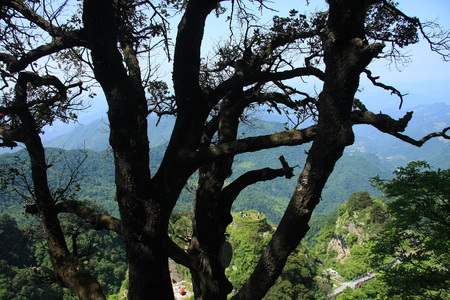 poems: Taoist Temple - Wudang Mountain in Shiyan City, Hubei Province territory Stock Photo