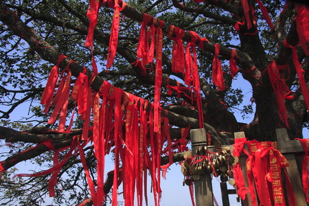 poems: a tree with red ribbon and pray concentric lock. Stock Photo