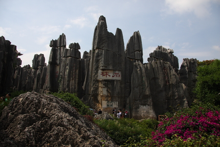 Stone Forest, the famous World Natural Heritage, located in Shilin Yi Autonomous County of Yunnan Province, is located in the world's only subtropical plateau karst geology and geomorphology of wonders, so far, 270 million years old. 新聞圖片
