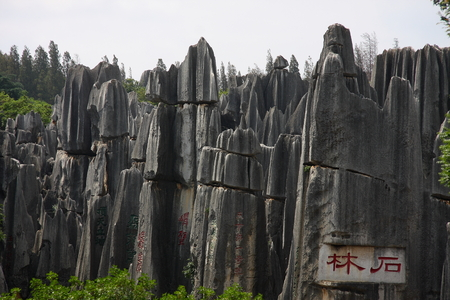 world natural heritage: Stone Forest, the famous World Natural Heritage.