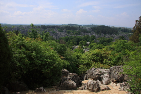 autonomous: Forest, located in Shilin Yi Autonomous County of Yunnan Province.