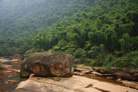 Swallow Rocks National Forest Park is located in Guizhou province Chishui, garden patches of dense Cyatheaceae group, fuchsia Danxia stone into the scene even more alone. 版權商用圖片 - 36893654