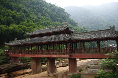 Swallow Rocks National Forest Park is located in Guizhou province Chishui, garden patches of dense Cyatheaceae group, fuchsia Danxia stone into the scene even more alone. Pictured bridges. 版權商用圖片 - 36894107