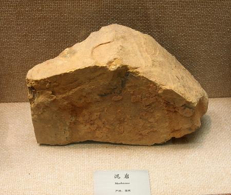 specimen: Mudstone, Huzhou City, Zhejiang Province mineral resources. Specimen collection in Huzhou, Zhejiang Museum. Editorial