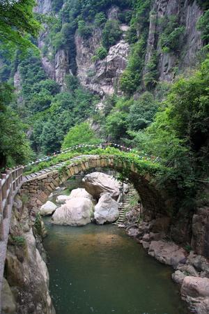 poems: bridge at valley
