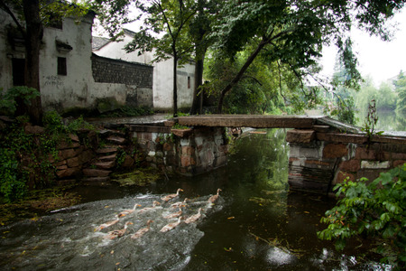 water town: Stone bridge and old buildings in Jiangnan water town