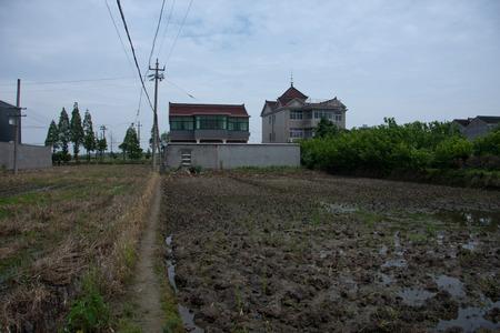 farmland: To be cultivated farmland