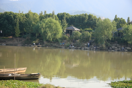 riverside trees: View