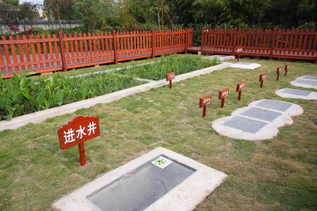 sewage: Sewage treatment