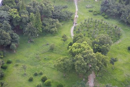 civilized: Aerial view of a park Stock Photo