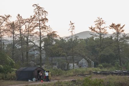 propolis: Sunset mountain bee farm
