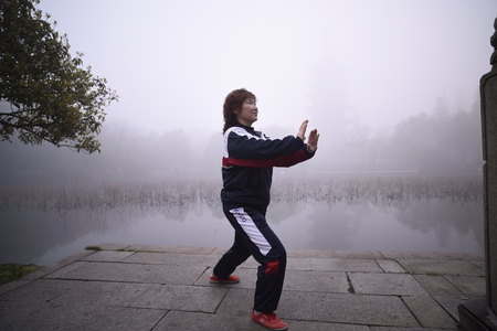 chuan: In the mist of Tai Chi
