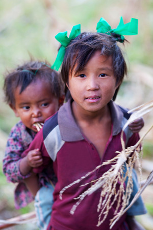 pauper: PHILIM, GORKHA, NEPAL - NOVEMBER 18: Nepalese girl Sonam, 8, carries her baby sister in a corn field on November 18, 2009 in Philim village, Nepal. Editorial