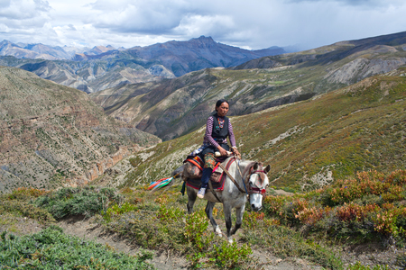 drover: SHEY LA, NEPAL - SEPTEMBER 5: Tibetan girl riding across Shey La pass on September 5, 2011 in Shey village, Nepal Editorial