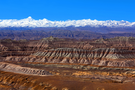 Earth Forest Geopark in Zhada County, Tibetan Autonomus Region of China. It is the largest and most distinctive clay forest that was formed due to the air-slaking of the tertiary stratum.