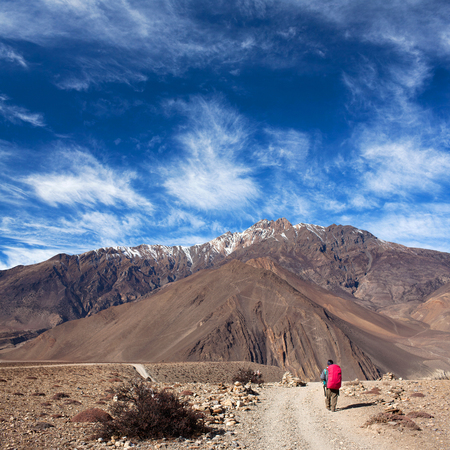 sherpa: An unidentified hiker with backpack walking on the road from Muktinath to Jomsom on Annapurna Circuit trek in Annapurna Conservation Area, Nepal Himalaya