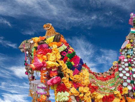 Camel on blue sky background at Bikaner Camel festival in Rajasthan, India 스톡 콘텐츠