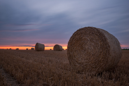 Hay bales lined up at sunset