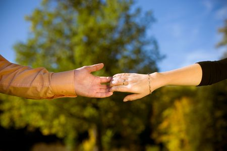Couple holding hands in a meadow close-up  photo
