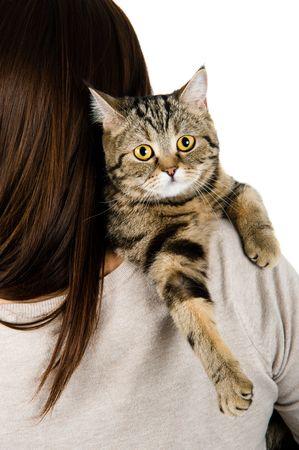 gato gris: Gato en un hombro de la chica