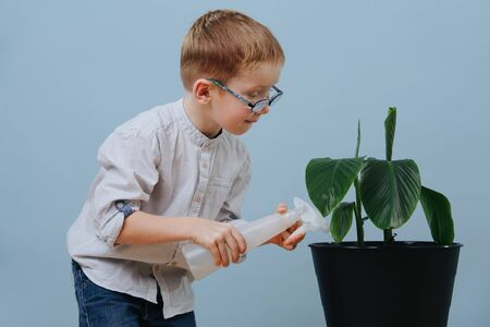 Little ginger boy in glasses watering potted plant with hand sprayer over blue background. He's absorbed in a process. Half length. Side view.