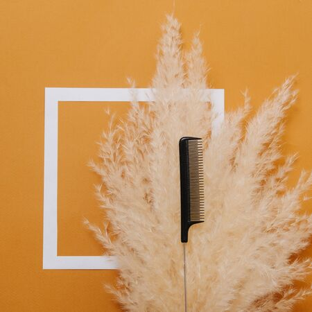 Hairdresser's rat tail comb placed over fluffy dry cereal bouquet. Top view. Over orange background with white square on it.