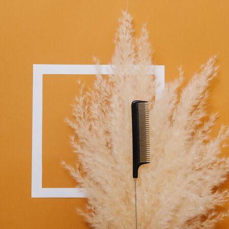 Rattenschwanzkamm des Friseurs, der über flauschigem trockenem Getreideblumenstrauß gelegt wird. Ansicht von oben. Über orangem Hintergrund mit weißem Quadrat darauf.
