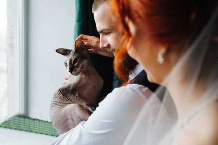 Newly wed couple standing next to the window, cuddling their hairless sphynx cat. They all are happy and relieved about their marriage.