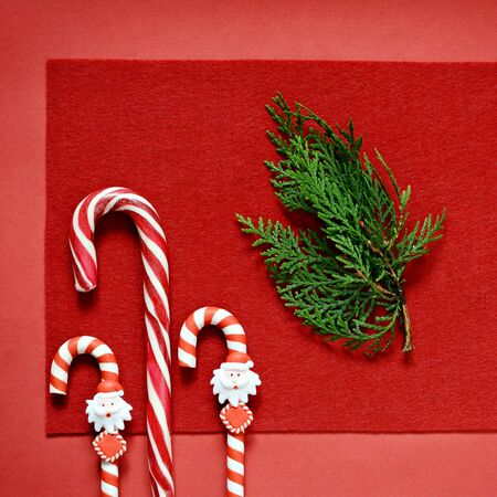 Candy cane on a red background with a sprig of fir. Christmas, New Year sweets. New Year card.