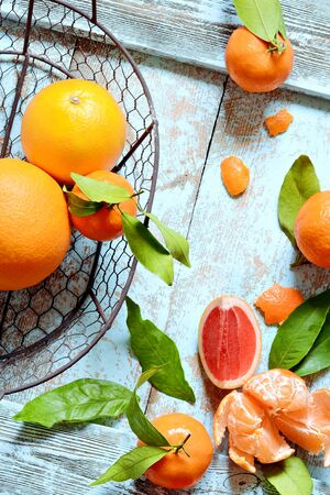 Tangerines (oranges, mandarins, clementines, citrus fruits) with leaves in basket on a mint (blue) background. Mandarin oranges with leaves in white basket on rustic wood background. Citrus Stock Photo